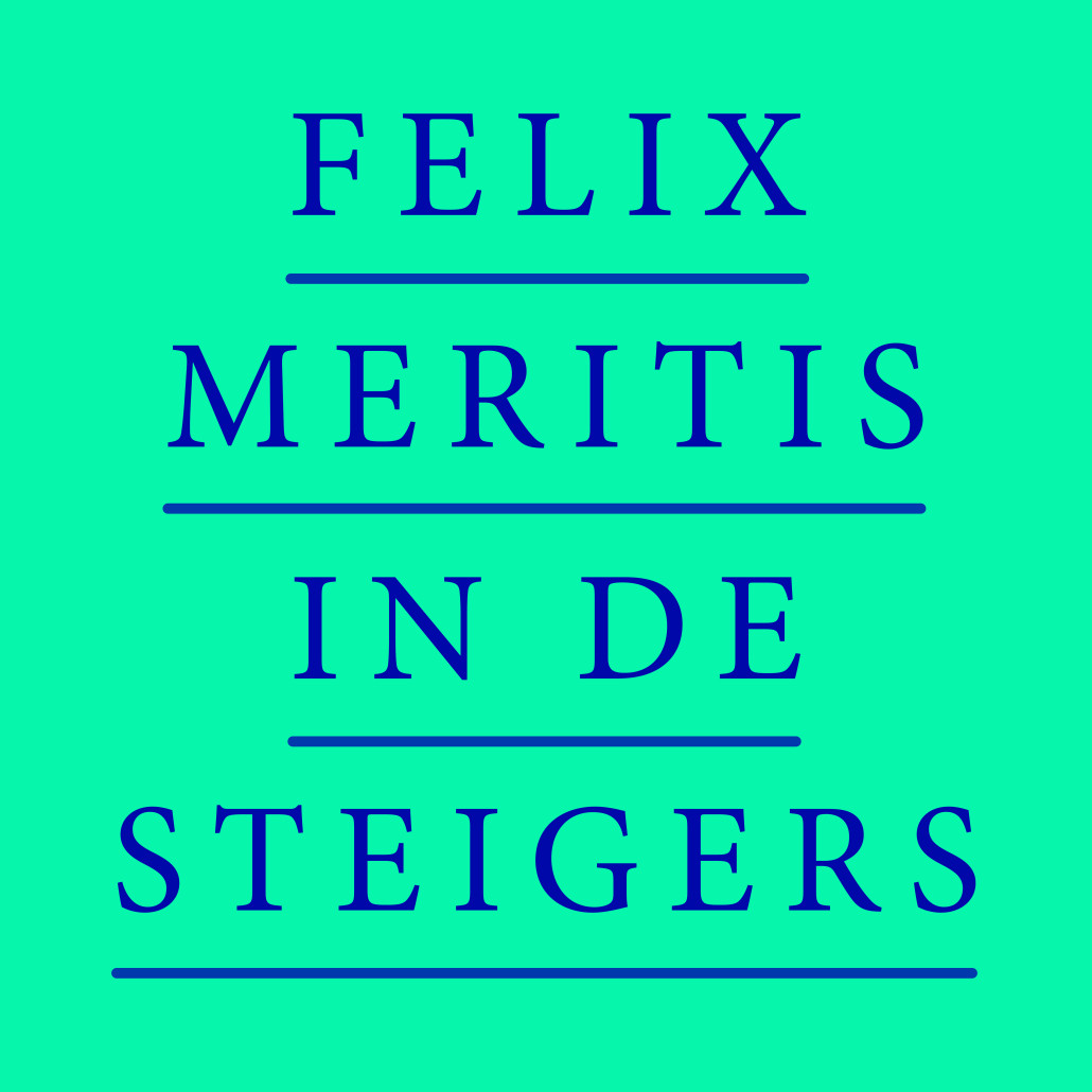 Current project Felix in de Steigers