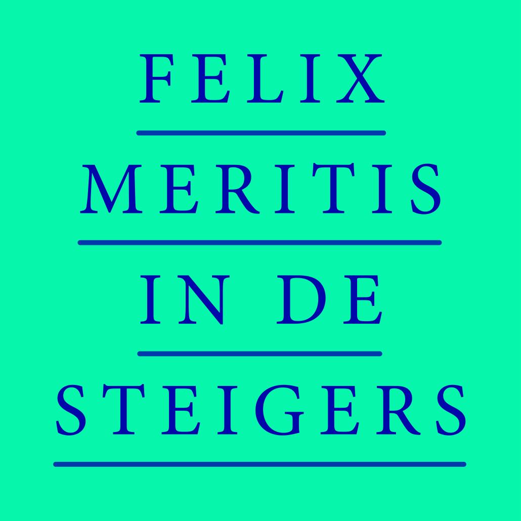Current project Felix in de Steigers