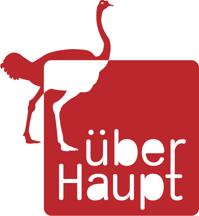 Current project Stichting überHaupt